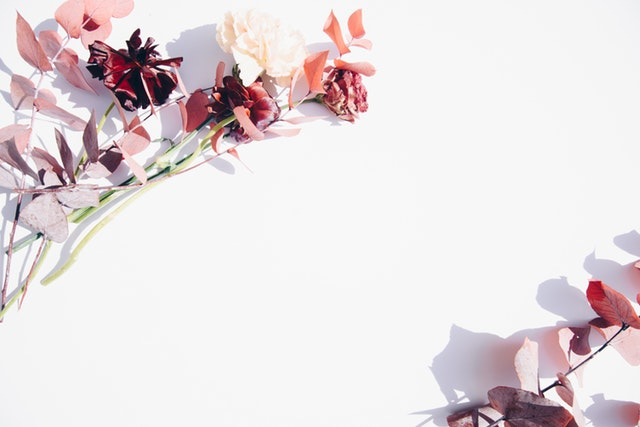svadobné kvety na bielom pozadí